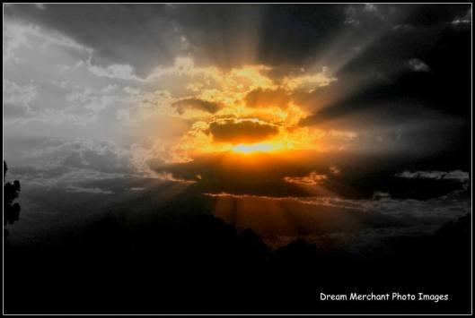 best dawn
